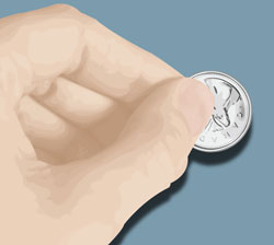 Vector of a left hand and a Canadian quarter coin vectored by Danielle MacDonald in Adobe Illustrator